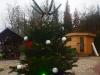 Weihnachtstauchen2018_01